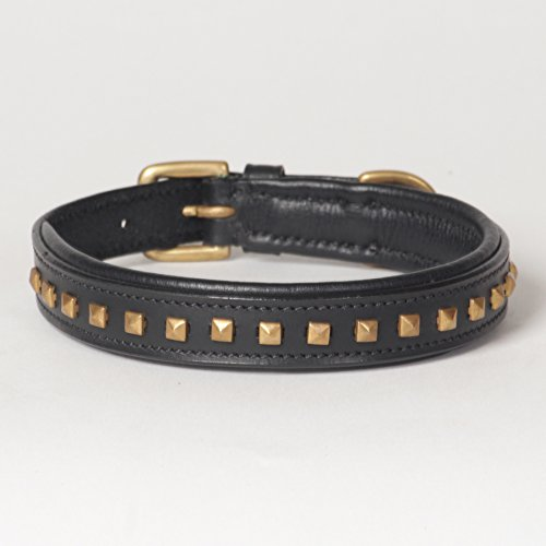 "Small Leather Studded Padded Phantom Dog Collar; Fits 12"" - 14"" Neck Size"