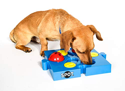 SPOT Seek-a-Treat Flip 'N Slide Treat Dispenser for Dogs | Dog Treat Dispenser | Dog Treat Dispenser Toy | Interactive Puzzle | Dog Treat Toys For Boredom | Dog Treat Toy Puzzle | Dog Toy Games, Model:5779