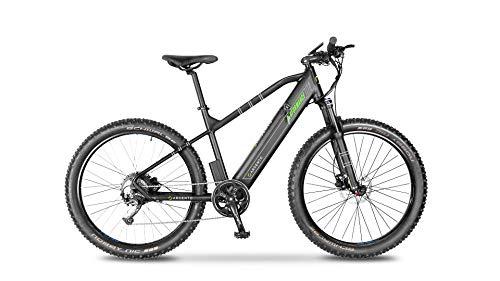 Argento Bicicletta elettrica Performance Mountainbike, Unisex Adulto, Nero e Verde, taglia unica