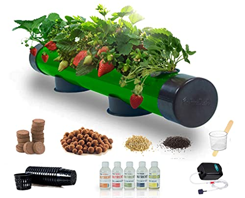 Pindfresh Hydroponics kit for Home - PindPipe - 5 Plants Hydroponic System, Hydroponics Beginner System - Reusable - for Indoor/Outdoor Hydroponics- Seeds Included