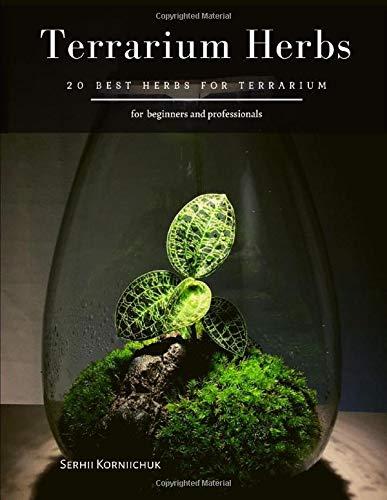 Terrarium Herbs: 20 Best herbs for Terrarium