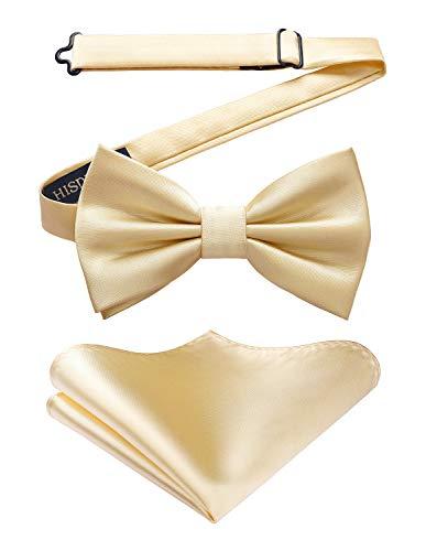 HISDERN Fliege mit Einstecktuch fur Herren Einfarbig Einstellbar Smoking Fliege fur Hochzeit, Party Champagner / Gold