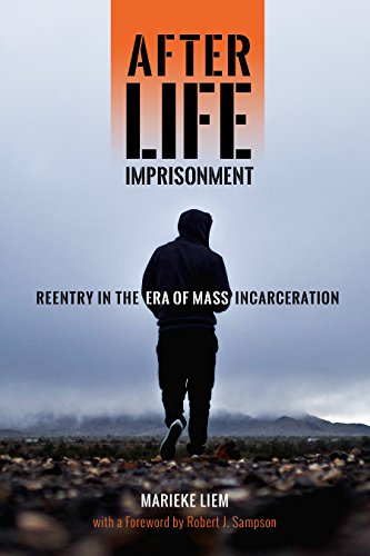 Image of After Life Imprisonment: Reentry in the Era of Mass Incarceration (New Perspectives in Crime, Deviance, and Law, 13)