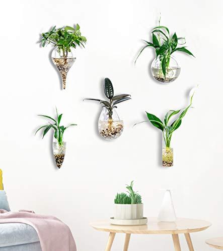 KnikGlass Wandvasen Glas Pflanzgefäße Glasvase hängen Blumentopf Wasser Pflanzen Vase Pflanzenbehälter, für Haus, Garten, Hochzeit oder im Urlaub Dekos (Style 1)