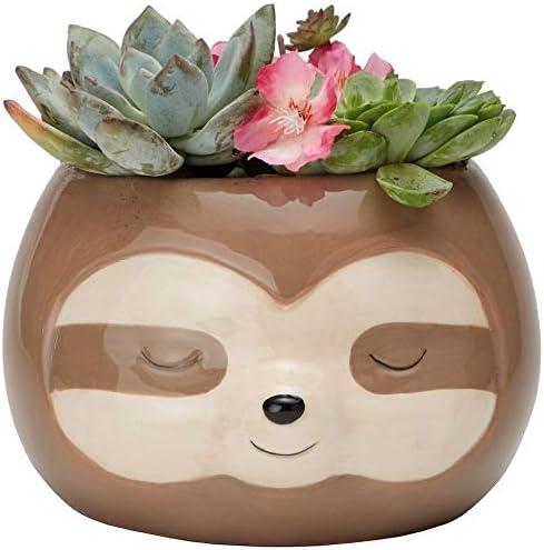 Streamline Imagined depot All items free shipping Ceramic Zen Pot Planter Sloth Flower