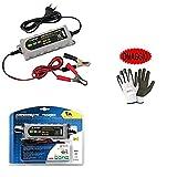 Compatible avec Peugeot SATELIS II 300 Chargeur DE Batterie pour Moto Scooter Quad Boats Camper LAMPA 70178 Entretien Actuel 6/12V-0,55/1A Universel pour Batteries AU Plomb,SM,Gel,AGM