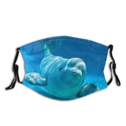 Cute Beluga Whale Blue Cloth Face Mask With Filter Pocket Washable Face Bandanas Balaclava Anti-Dust Print Reusable Breathable Fabric Mask With 2 Pcs Filters