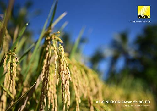 Nikon(ニコン)『AF-SNIKKOR24mmf/1.8GED』