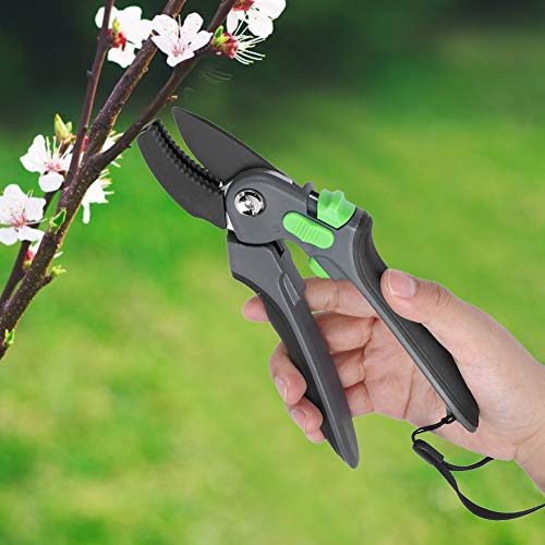 Qinlorgo Cisailles d'élagage, Ciseaux de Jardin économes en Travail, Ciseaux de Branche de Fruits, Outils de Jardin