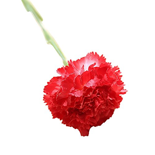Nelke, künstliche Blume, gefälschte Blume YunYoud Künstliche gefälschte Blumen Nelken Blumen Hochzeit Bouquet Party Home Decor