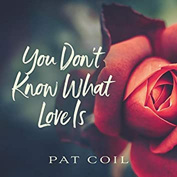 You Don't Know What Love Is (feat. Danny Gottlieb & Jacob Jezioro)