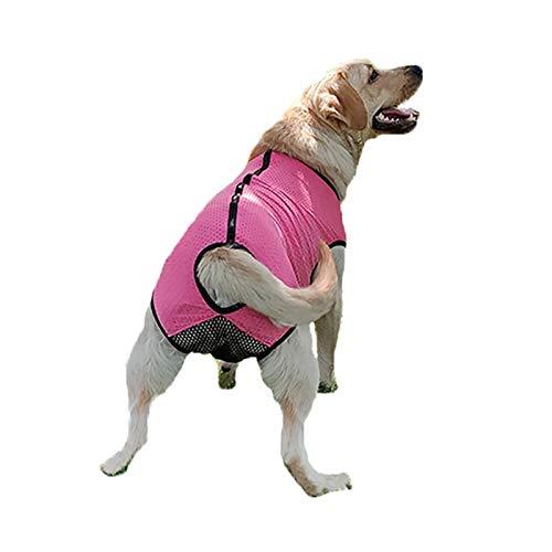 Pañales Grandes Perros Femeninos, Cinturón Fisiológico Reutilizable Pañales De Envoltura Lavables Reutilizables, Pantalones Fisiológicos Para Perros Grandes ( Color : Rose red , Size : XXXX-Large )