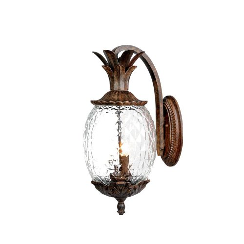 Acclaim 7502BC Lanai Collection 2-Light Wall Mount Outdoor Light Fixture, Black Coral