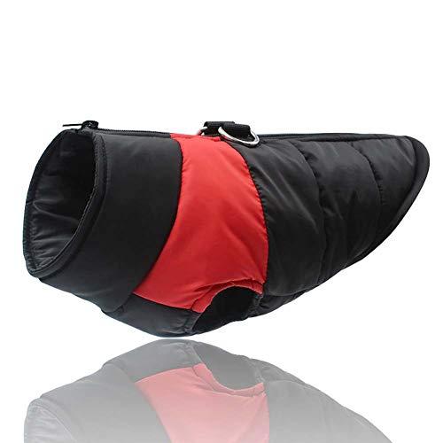 KSITH Hondenkleding voor huisdieren, dik vest voor herfst en winter, waterdicht, voor warme jassen, XXL, Netto