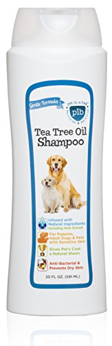 Creative Pet Group 2-in-1 Tea Tree Oil Shampoo and Conditioner for Dogs, 20 oz