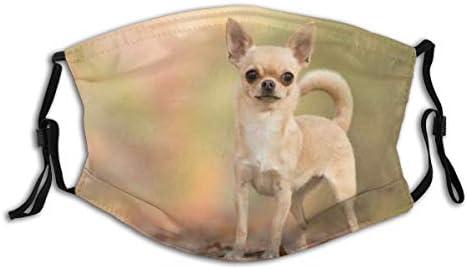 Lovely Chihuahua Animal Print Washable Cloth Scarf Face Mask Bandana Balaclava Breathable Reusable product image