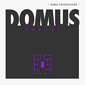 Domus Pro 17