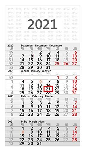 geiger-notes Budget 4-Monats-Wandkalender 2021-30 x 56 cm