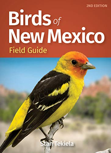Birds of New Mexico Field Guide (Bird Identification Guides)