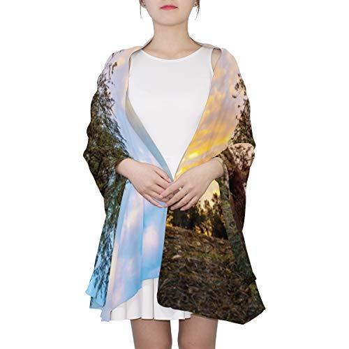 Olive Olive Trees In Olive Gardens Einzigartiger Mode-Schal für Frauen Leichte Mode Herbst Winter Print Schals Schal Wraps Geschenke für den Vorfrühling