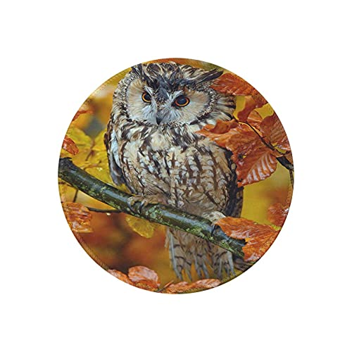 Fall Autumn Seasonal Leave Leaf Farmhouse Rustic Owl Round Mouse Pad Office Gaming Mouse Pad Gamer Computer Accessories Cool Mat Small for Girl Boy Kid Women Men Home Decor Ornaments Items