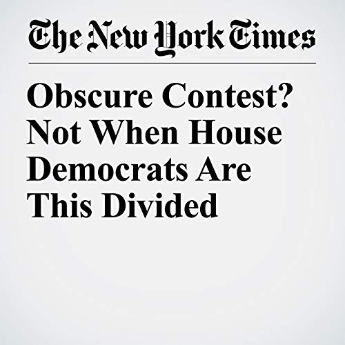 Obscure Contest? Not When House Democrats Are This Divided copertina