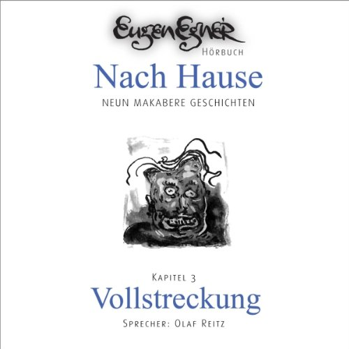 Vollstreckung audiobook cover art