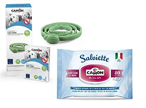 Camon Lingettes de protection pour chien, Mirra et Clorexidina et Collier Leis