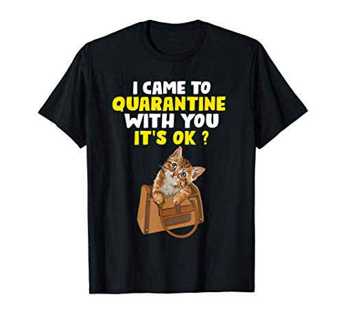 I Came Quarantine With You It's Ok Quarantined With My Cats T-Shirt