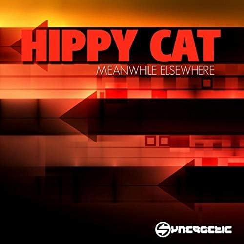 Hippy Cat