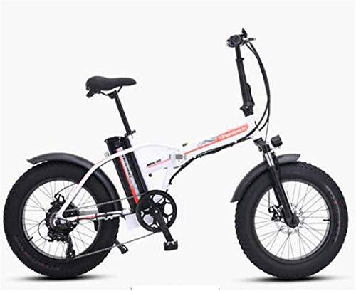 Bicicletas Eléctricas, Bicicleta eléctrica de la bicicleta de la bicicleta de la bicicleta eléctrica de las bicicletas eléctricas de la tinta grasa y la bicicleta de montaña de la bicicleta eléctrica