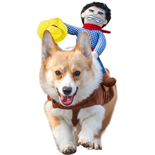 NACOCO Cowboy Rider Dog Costume for Dogs Clothes Knight Style with Doll and Hat for Halloween Day Pet Costume (M)