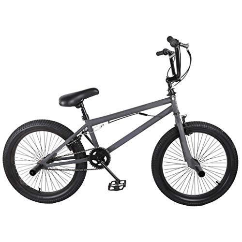 Medidor de niños y niñas Bicicleta de Acero Dual de los Hijos Adultos Gris del Estilo Libre de la Bici de 20 Pulgadas,Gris