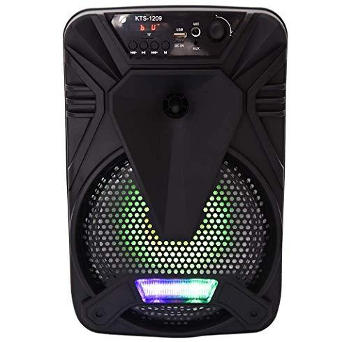 Sistema de Altavoces Bluetooth de Portab: Sistema Portab de Altavoz Bluetooth de PORTAR con micrófono en, Luces de Fiesta, Lector de Tarjetas SD MP3 / USB, Ruedas Rolling - Mic, Remoto BJY969
