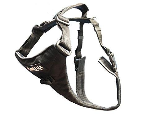 Neewa Hundegeschirr, leicht zu Laufen, ideal für große Hunde, Größe L, Schwarz