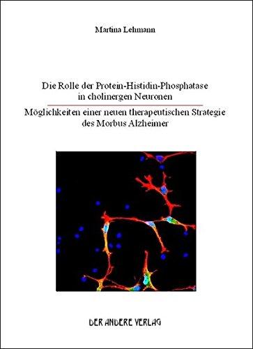 Die Rolle der Protein-Histidin-Phosphatase in cholinergen Neuronen: Möglichkeiten einer neuen therapeutischen Strategie des Morbus Alzheimer