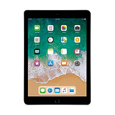 Apple iPad 9.7inch with WiFi 32GB- Space Gray (2017 Model) (Renewed) by Apple Computer
