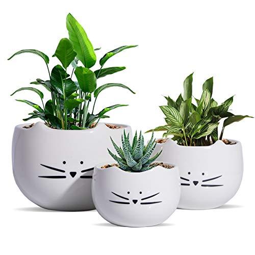 Koolkatkoo Süßer Katzen-Blumentopf, Kaktus, Sukkulenten, Blumentöpfe, Keramik, weiß, 3 Stück