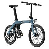 Bicicleta eléctrica Plegable FIIDO D11 de 20 Pulgadas para Adultos, 36 V, 250 W, 80 a 100 km de kilometraje, (Cielo BLU)