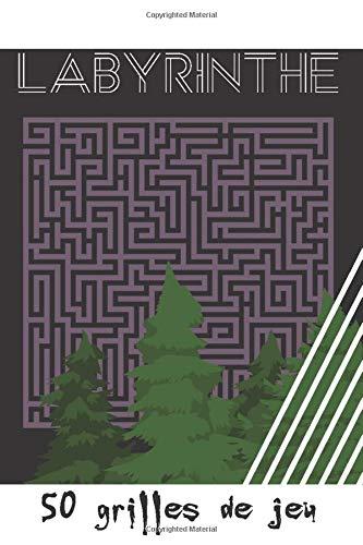 Labyrinthe - 50 grilles de jeu: Cahier en français - volume 1