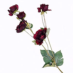 Artificial and Dried Flower Anemone Simulation Flowers Rose Silk Flowers Artificial Flowers Wedding Decoration Home Decoration Fake Flower Photography – ( Color: Red Wine )