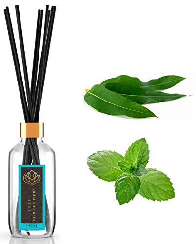 Healing Aromatherapy Scent Diffuser with 100% Pure Eucalyptus and Spearmint Essential Oils | Home Fragrance | 10 Reed Diffuser Sticks and 4 oz Bottle | Hand Made in USA