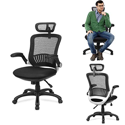 Ergonomic Office Chair - Ergousit Mesh Desk Chair with Adjustable Backrest and Flip up Armrest, Rolling Office Chair with Headrest, Lumbar Support, Executive Task Chair
