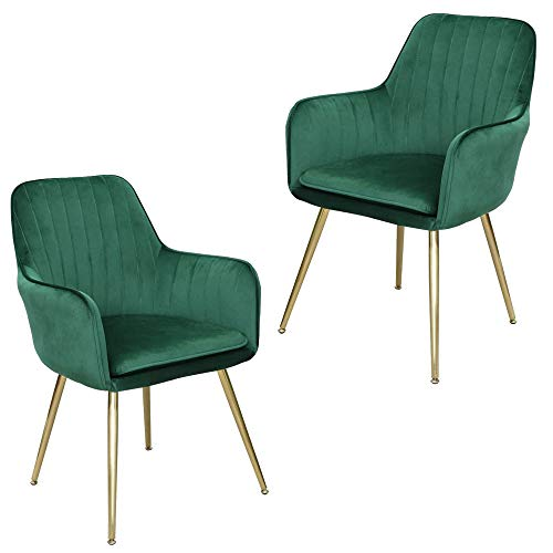 Lansen Furniture Modern Living Dining Room Accent Arm Chairs Club Guest with Gold Metal Legs (2, Green)