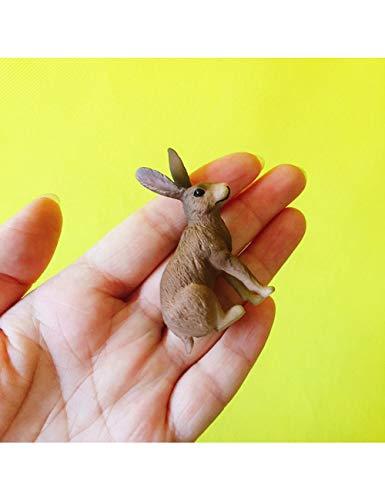 JJZS Wohnaccessoires Kaninchen/Hase/Fee Gartenzwerg Tiere/Moos Terrarium Home Desktop Dekor/Bonsai/Puppenhaus/Miniaturen/Figur/Spielzeug/Modell