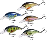 MORGENLICHT 5PCS Fishing Lures Mini Fishing Lures Kit 3D Fishing Baits Life-Like...