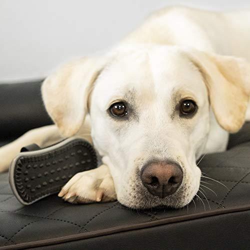 FURminator Striegel für Hunde, Fellpflege Hundebürste zum Ausbürsten von Staubundlosem Haar für gesundes glänzendes Fell, mit Gummi Noppen und ergonisch geformtem Griff - 8