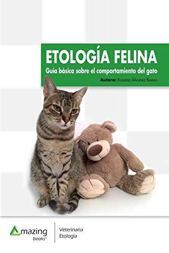 Etología felina: Guía básica del comportamiento del gato