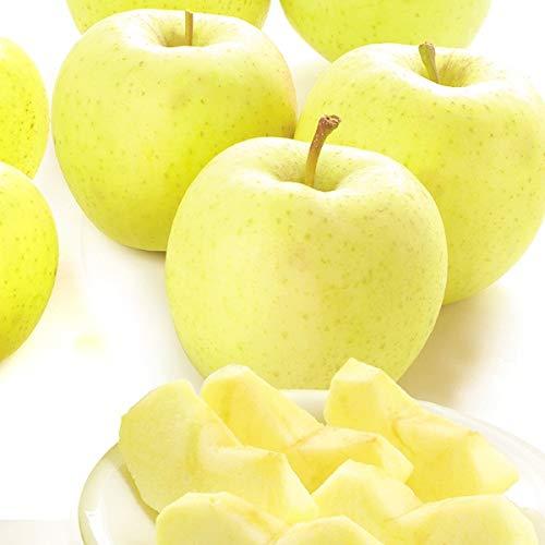 国華園 りんご 青森産 星の金貨 10� 1箱 食品