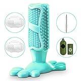 SerDa-Run Hundezahnbürste Hundespielzeug Kauspielzeug Zahnpflege aus Naturkautschuk